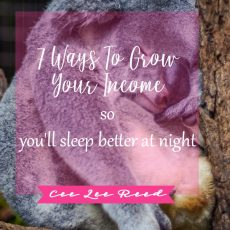 7 Ways to Grow Your Revenue + Sleep better at night