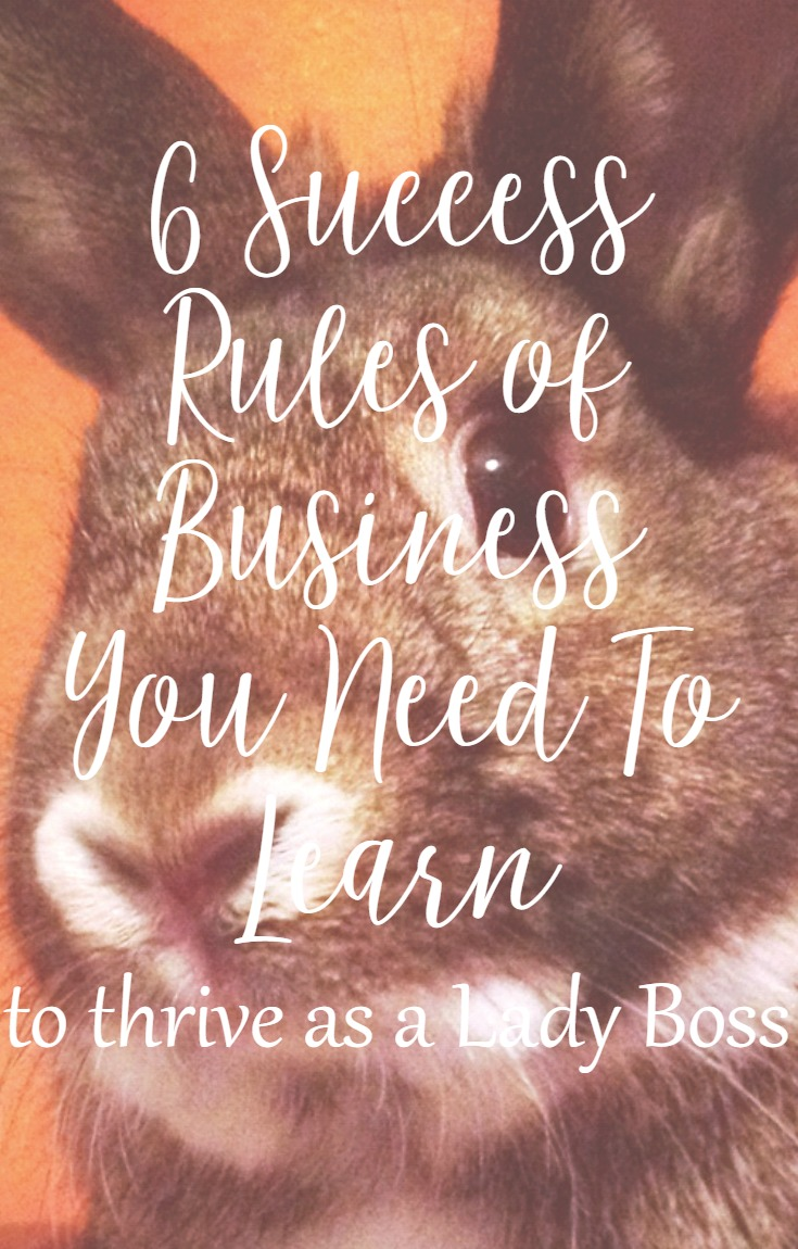 Success Rules of Business That You Need To Learn As A Lady Boss from CeeLeeReed.com
